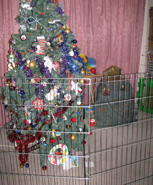 Christmas Tree and Fence
