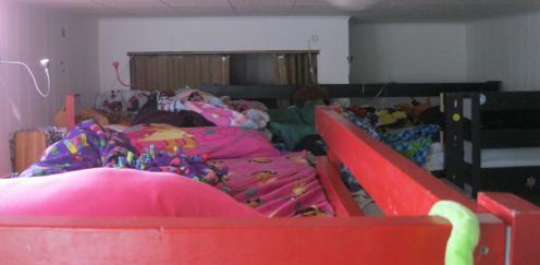 Loft Bed Nest