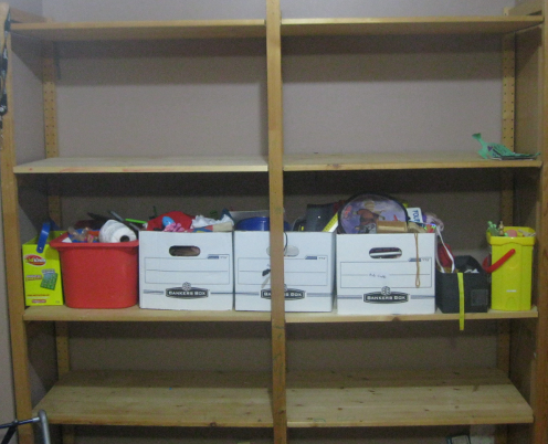 Downstairs Shelves Middle