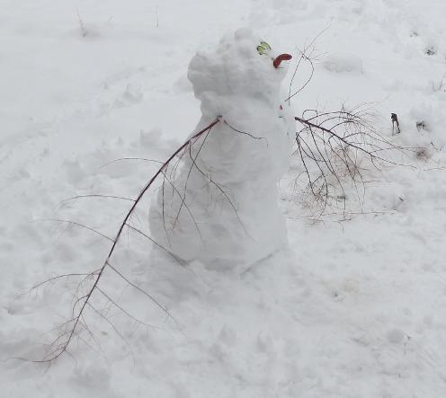 Kid's Snowman - Olaf